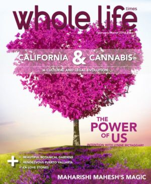 The 2018 February / March Issue of Whole Life Times