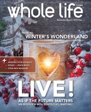 The Jan 17 - Dec 18 Issue of Whole Life Times