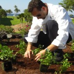 Fairmont Orchid Executive Chef Collin Thornton
