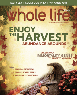 The Oct - Nov 2017 Issue of Whole Life Times