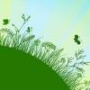grass walk