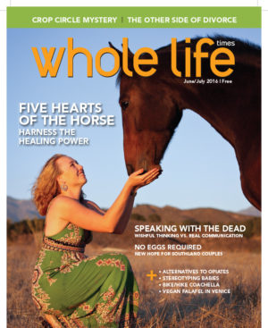The June/July 2016 Healing Connections Issue of Whole Life Times
